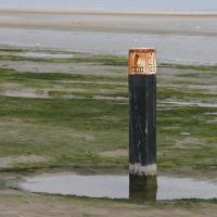 Het Groene Strand bij Ballum